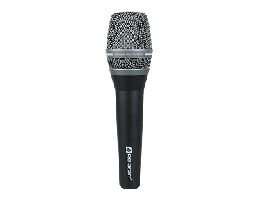 PM-100 Professional Condenser Microphone
