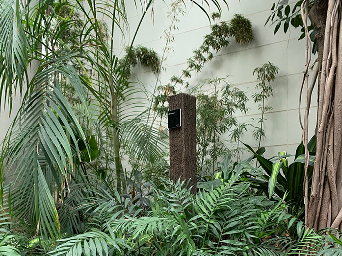 Relacart TM-500 Wireless Microphone System with Antenna System applied in a botanical garden